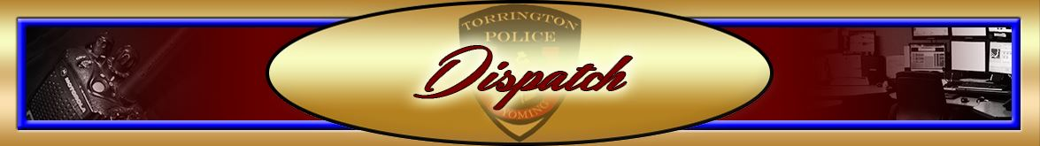 Dispatch Banner